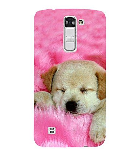PrintVisa Cute Pet 3D Hard Polycarbonate Designer Back Case Cover for LG K10 :: LG K10 Dual SIM :: LG K10 K420N K430DS K430DSF K430DSY