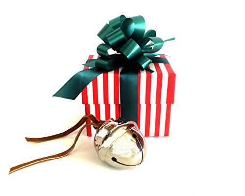 Polar Express Sleigh Bell Gift Set (1)