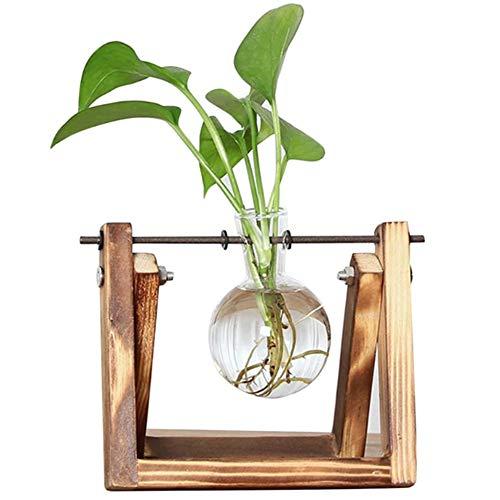 QUVIO Houten stek vaasje/Glazen vaas voor waterplant/Ook voor het stekken van waterplanten/Plant standaard/Hydrocultuur/Stekken & planten voor binnen - Bruin