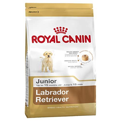 Royal Canin Kroketten für Labrador- und Retriever-Welpen, Junior, 12kg, 1 Sack