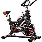 DSHUJC Bicicleta de Fitness Bicicleta de Spinning Bicicleta de Ejercicio Equipo de Fitness en casa Bicicleta de Ejercicio silenciosa Bicicleta de Ejercicio Interior Bi