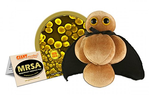Giant Microbes Plush MRSA Multiple-Resistant Staphylococcus Aureus Microbe, 5 to 7 by Giant Microbes