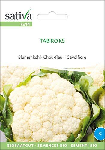 Sativa Tabiro KS bloemkool Bio Chou-Fleur, 1 portiezak