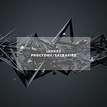Procyonx