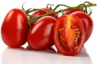 OrOlam Tomato Roma Organic Non-GMO 250 Seeds Heirloom Vegetable Seed