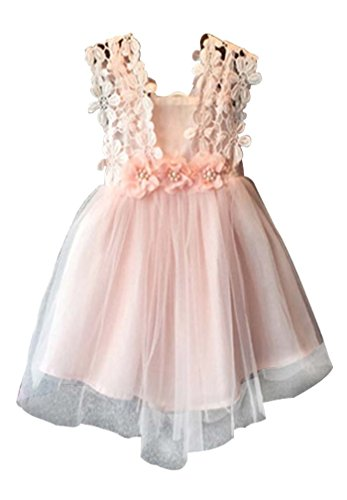 Baby Girls Sleeveless Lace Wedding Vintage Birthday Party Princess Flower Dress 2T(Tag 110) Pink