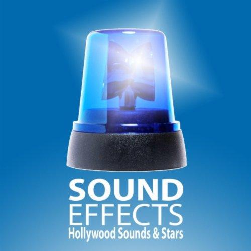 Blaulicht Sirene - Martinshorn Polizei Feuerwehr Rettungsdienst Soundeffekt Alarm Signal Hinweis