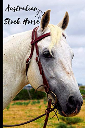 Australian Stock Horse Notebook For Horse Lovers: Composition Notebook 6x9' Blank Lined Journal