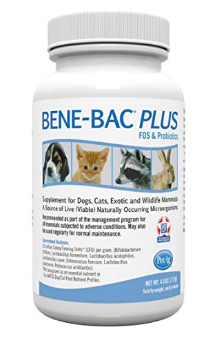 Bene-Bac Plus Prebiotic Pet Powder, 4-1/2-Ounce