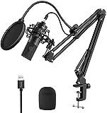 FIFINE Kit de micrófono de transmisión USB, micrófono de estudio de condensador con soporte de brazo y filtro pop para podcasts - K780