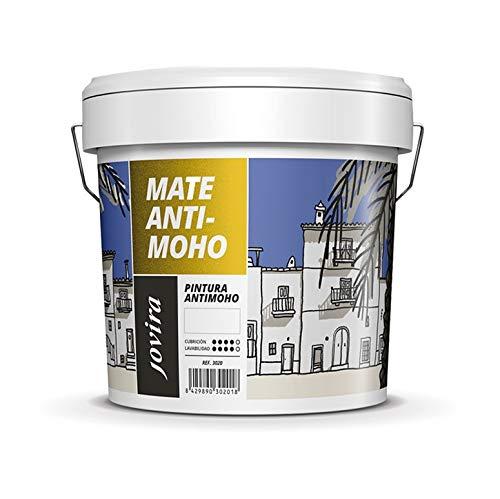 PINTURA ANTIMOHO, evita el moho, resistente a la aparición de moho en paredes, aspecto mate. (12 kg, BLANCO)