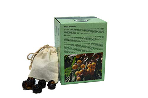 1 Pound Greenwill Organic Soapberry/Soap Nut with 1 Wash Bag
