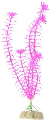 GloFish Large Fluorescent Plant for Aquarium Decoration, Pink