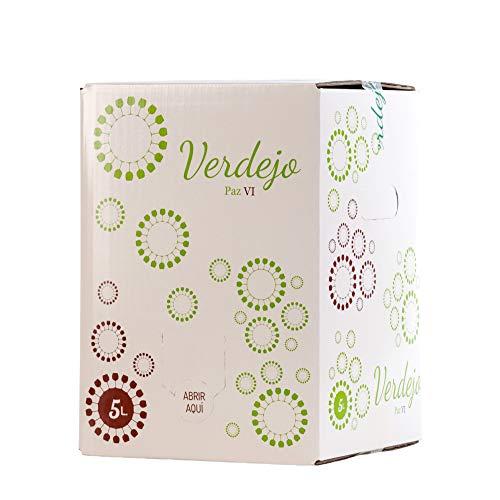 Bag in Box verdejo 5 Litros Vino Blanco Verdejo seco afrutado caja de vino blanco Verdejo Paz VI