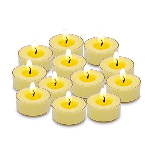 Citronella Tealight Candles Outdoor and Indoor Mini Soy Wax Candle Bulk for Patio, Yard and Garden - 12 Candles/Box