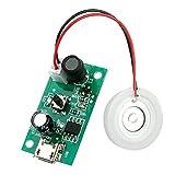 Akaid Umidificatore, diffusore di aromi a bottiglia diamantata portatile umidificatore d'aria, rimovibile per l'umidificazione in ufficio a casa