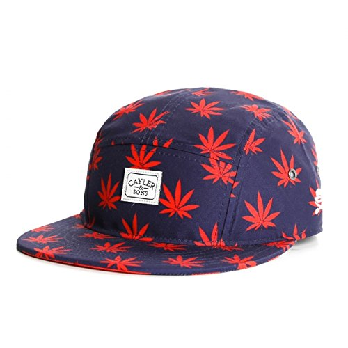 Casquette 5 panel Cayler and Sons Budz N stripes Navy - Mixte