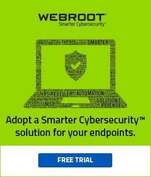 Webroot SecureAnywhere Anti Virus - 1 User 1 Year (Key)