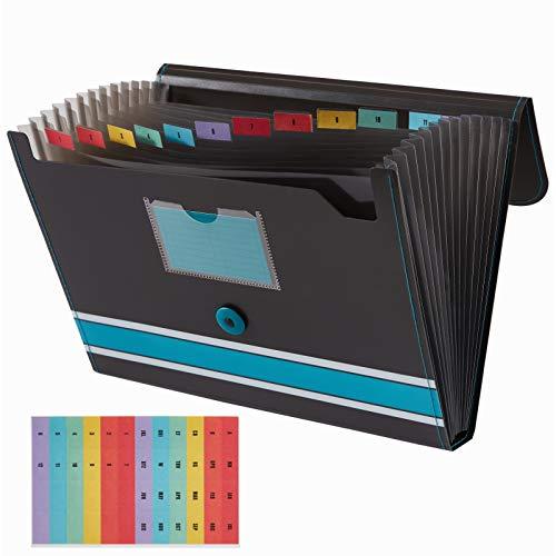 Sooez Expanding File Folder Paper Organizer with Sticky Labels, 13 Pockets File Organizer Accordion File Organizer, Letter/A4 Paper/Document Folder Organizer, File Folder Organizer File Holder, Blue