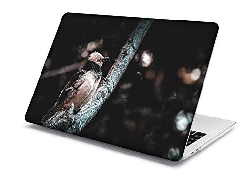 2018-2020 MacBook Air 13 inch Case Model:A1932/A2179,QiuHuiCase Protection Plastic Hard Case Only Compatible Newest MacBook Air 13 inch with Retina Display Touch ID (Feather Series 15)