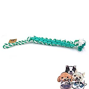 PetFun Extra Long Dog Rope Braided Excellent Interactive Chewing Toy, Aqua with Small and Big Sizes