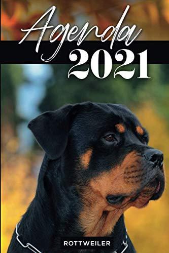 Agenda 2021 : Rottweiler: Année 2021 (de Janvier à Décembre 2021) | Chien | 2 jours par page | Calendrier | Format A5 | Idée cadeau pour les ... (Noël, Nouvel An, Fêtes de fin d'année, etc)