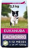 EUKANUBA Alimento seco para Cachorros de Razas pequeñas y Medianas, Rico en Cordero y arroz, 2,5 kg