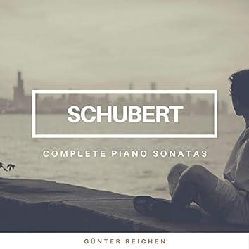Schubert: The Complete Piano Sonatas