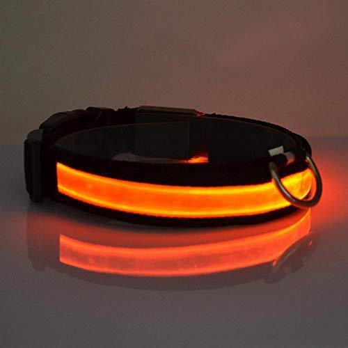MMWW USB Oplaadbare Hondenhalsband LED Knipperende Kraag Licht In Het Donker Hondenriem Lichtgevende Halsbanden Hondenuitvoering Veilig Dierbenodigdheden-O_XL