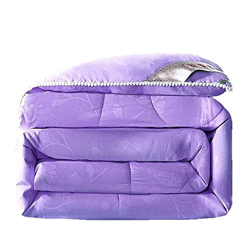 BSLBBZY Summer Winter Silk Quilt Silk Comforter Purple Gray Green Colorful Duvet Filling/Mulberry Silk Blanket Warm blanket (Colore : Purple, Dimensioni : 220x240cm 3kg)