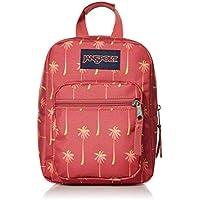 JanSport Unisex-Adult Big Break Backpack