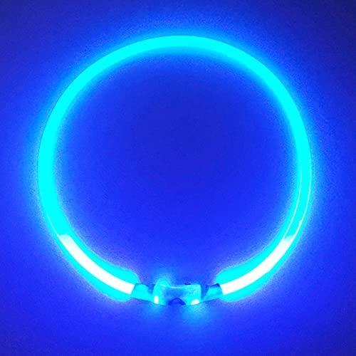 PetSol -   LED Leuchthalsband