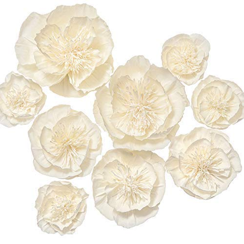 Crepe Paper Flowers Amazon Com