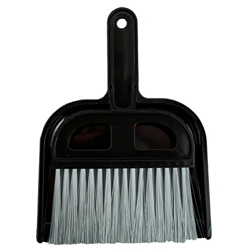 Detailer's Choice 4B320 Whisk Broom and Dust Pan