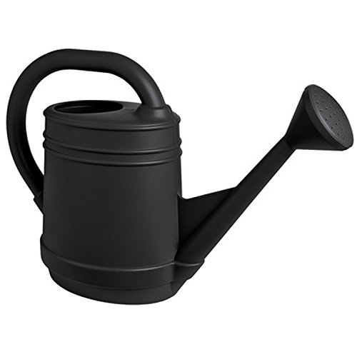 Bloem Lightweight Resin Watering Can - 2 gal.
