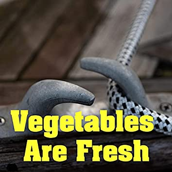 Vegetables Are Fresh
