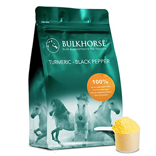 BulkHorse Turmeric + Black Pepper | TURMERIC for JOINT FUNCTION and DIGESTION | 100% free from added sugars | 1000 g