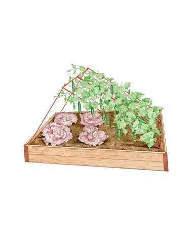 Gardener's Supply Company Medium Cucumber Trellis