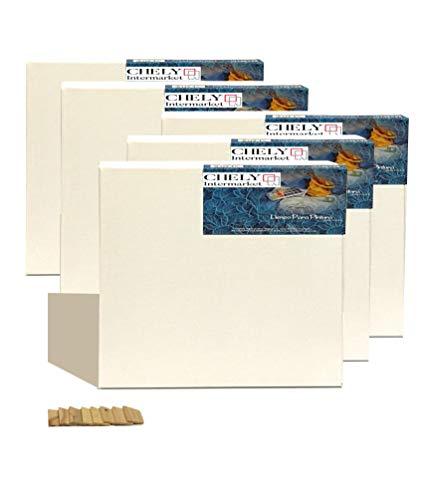 Chely Intermarket, lienzos para pintar 30x30cm-5piezas pre-estirados/Perfil 16mm/280 grs-380grs/Apto para Óleo, acrílico/Pre-Estirado 100% Algodón/Color Blanco/Triple Preparado(560-30x30*5-0,20)