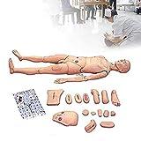 GXFC Patient Care Simulator Mdico Examen De Examen Consumibles Ciencia Educacin Suministros Formacin De Enfermera Manikin para DemostracinHJHY