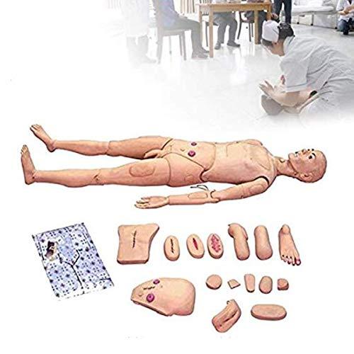 GXFC Patient Care Simulator Médico Examen De Examen Consumibles Ciencia Educación Suministros Formación De Enfermería Manikin para DemostraciónHJHY