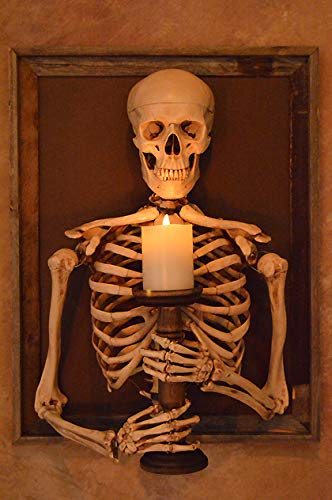 Framed 3D Life-Size Skeleton Torso Holding Flameless Candle