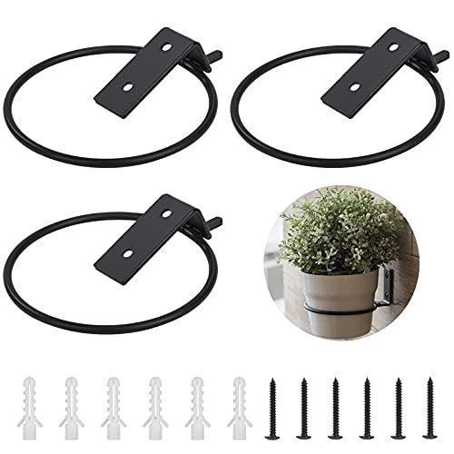 QH-Shop Estante de Hierro para Colgar Plantas, 3 Unidades Metal Soporte de Pared Colgadores de Macetas con Anillo y Tornillo, 11 x 13,5 cm (Negro)