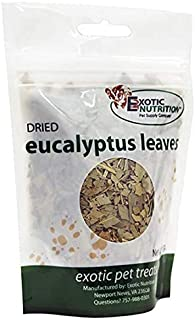 Exotic Nutrition Eucalyptus Leaves (60 g.) - Healthy Natural Treat - Native Sugar Glider Food - 100% Natural Dried Eucalyptus Leaves