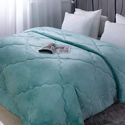 Edredón de 220 x 240 cm grueso de invierno de franela azul, 250 g/m2, forro polar suave y cálido. Colcha para 2 personas.