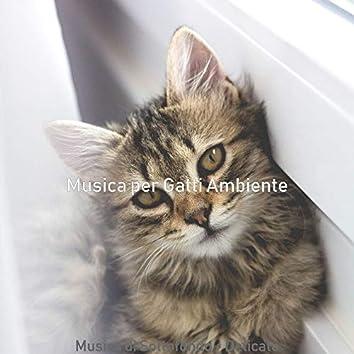 Musica di Sottofondo - Delicato