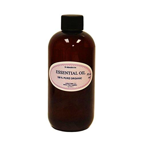 Catnip aceite esencial 100% Pure 8oz