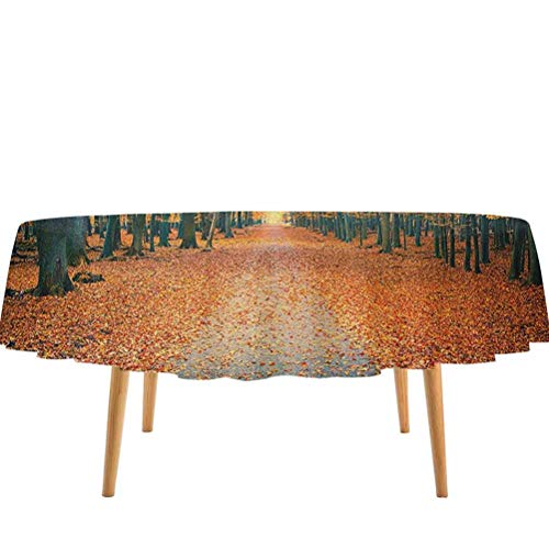 prunushome Forest Round Tablecloth Romantic Autumn Alley in The Woods Foliage Scenics Park Forest Image for Outdoor and Indoor Use Yellow Orange Slate Blue (70' Round)