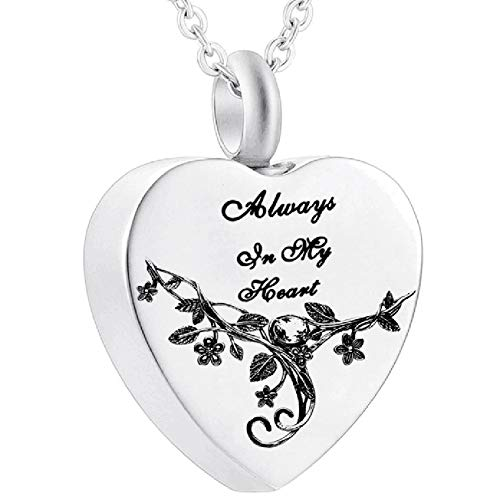 Canghai Collar de cenizas, collar de urna en forma de corazón para cenizas, cenizas de acero inoxidable, recuerdo, cremación, joyería colgante regalos para mujer
