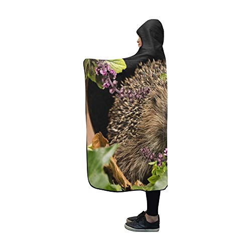Plsdx Decke mit Kapuze Igel Wild Native European Hedgehog Erinaceus Decke 60 x 50 Zoll Comfotable Hooded Throw Wrap